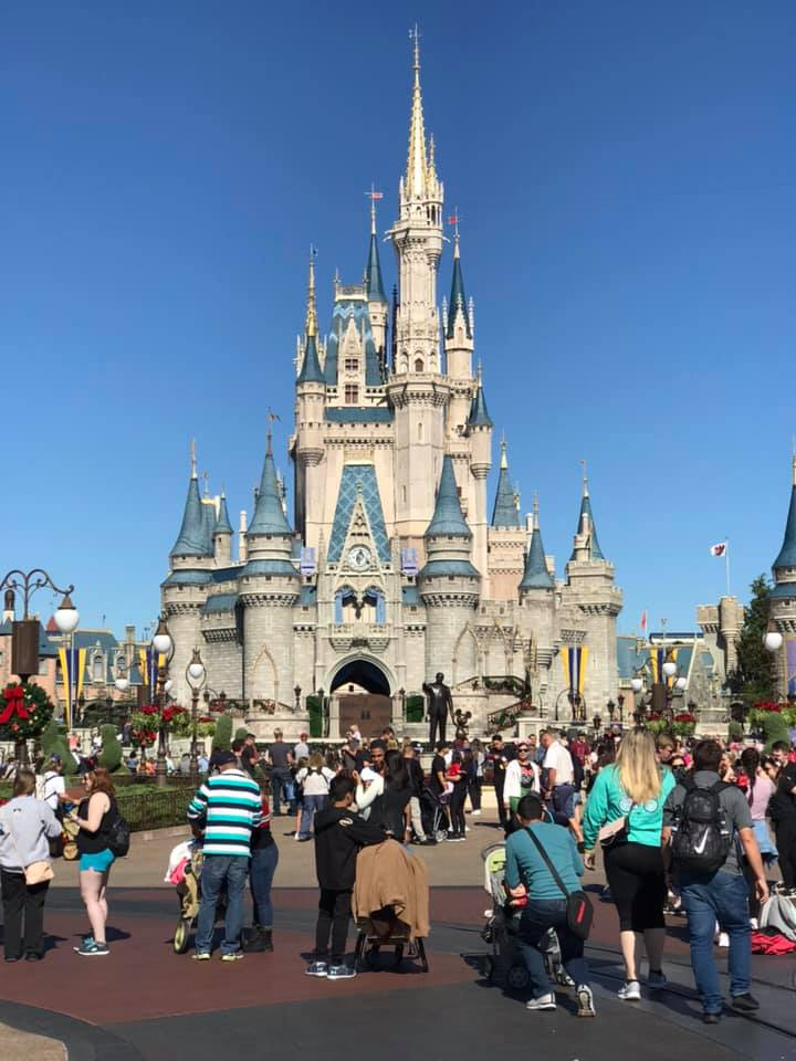 Magic_Kingdom_disney_world